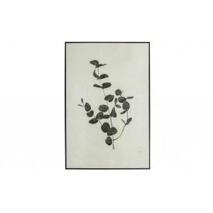 Juodas rėmelis Yaro Eucalyptus Art