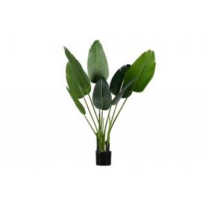 Žalia strelicija, dirbtinė, 108 cm