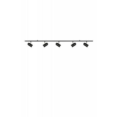 Lubinis šviestuvas Swan 5 (juodas)