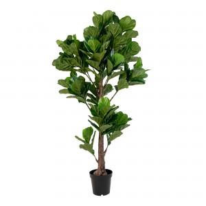 Lapuočių medis Fiddle
