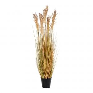 Dirbtinis augalas Sorghum Grass