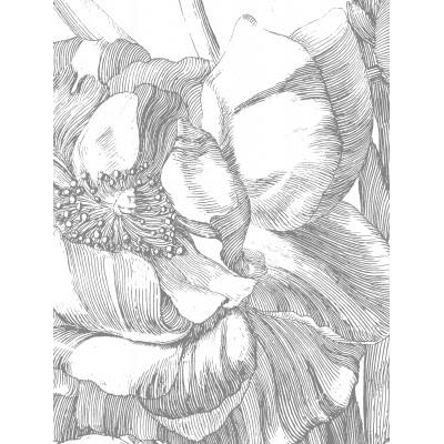 Tapetų pano XL, graviūrinės gėlės
