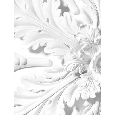 Skritulio formos tapetai, ornamentas