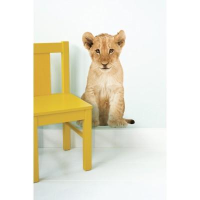 Sieninis lipdukas, safari draugai, liūtukas