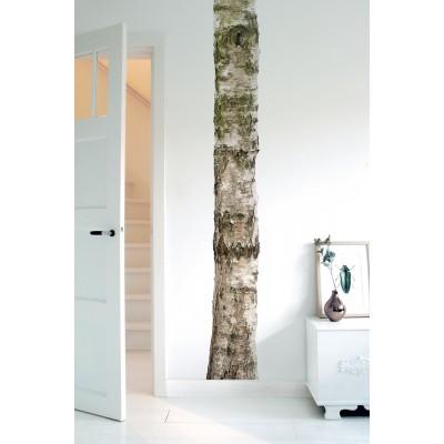 Sieninis lipdukas namų medis 4