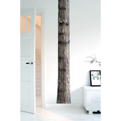 Sieninis lipdukas namų medis 6
