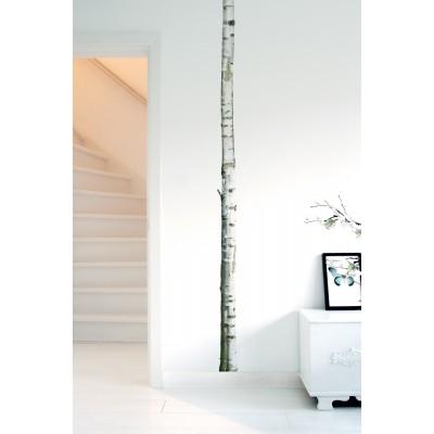 Sieninis lipdukas namų medis 2