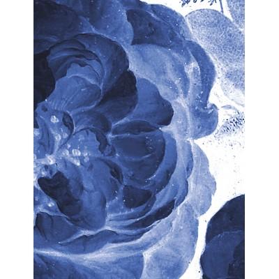 Tapetų pano, mėlynos karališkos gėlės