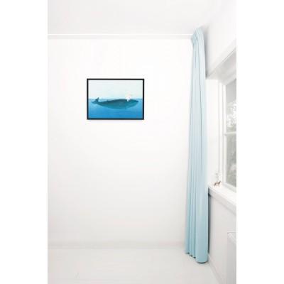 Plakatas, plaukimas ant banginio