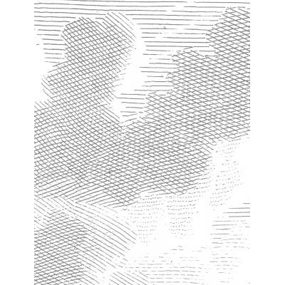 Fototapetas, graviūriniai debesys, 6 lakštai