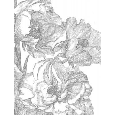 Fototapetas, graviūrinės gėlės, 4 lakštai